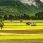field, valley, landscape-176602.jpg